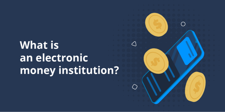What is an electronic money institution?